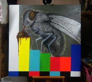 celeste-m-evans-fly-4