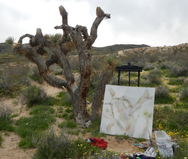 (The decline) Joshua Tree 6 in progress