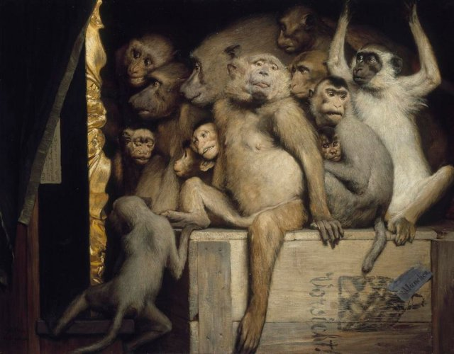 monkeys-as-judges-of-art
